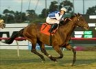 Mandella Works Turf Cup Magic With Boboman