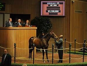 $1.1 Million Medaglia d'Oro Filly
