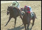 Malibu Kicks Off Santa Anita Meet