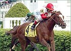 Joe Hirsch Turf Classic: Kitten's Joy in Lion's Den