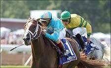 Turf Winner English Channel Retired to Stud for 2008