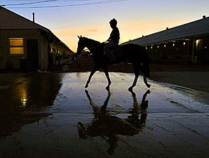 Sunny Skies and Cool for Breeders' Cup