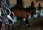 Quarantine Lifted for Half of Barn at Churchill Downs