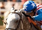 Baffert May Add Irrefutable to BC Brigade