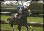 Derby Winner Continues Working Toward Donn Handicap