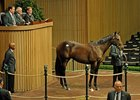 Keeneland Yearling Sale Ends Strong