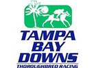 Upgraded Sam Davis Heads Tampa Bay Meet