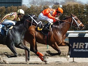Dominguez Sets Record at Aqueduct