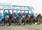 Aqueduct Cancels March 13 Card