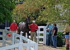 Fillies in Demand Sixth Day at Keeneland