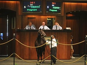 Downward Trend Continues at OBS Sale