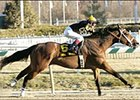 New York Shipper Fancies Laurel Park, Wins General George