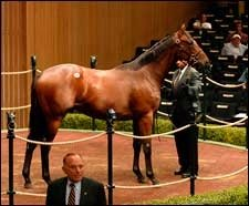 El Prado Son Goes for $750,000