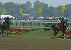 Census: MD Equine Industry Valued at $5.6B