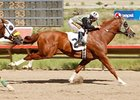 Report: Racing Could Return to Yavapai Downs