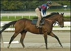 Saint Liam Has Last Workout for Breeders' Cup Classic