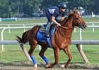 Coil on His Way to Travers After Bullet Work