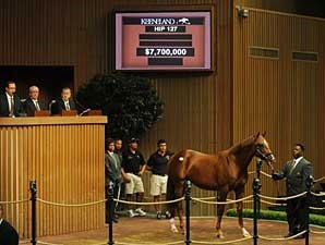 Azeri's First Foal Fails to Sell