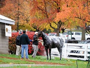Double-Digit Increases Continue at Keeneland