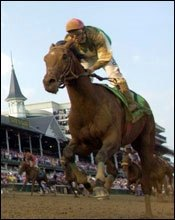 Afleet Alex to Arrive First for Preakness