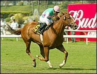 Tates Creek Gives Frankel a Second Grade I