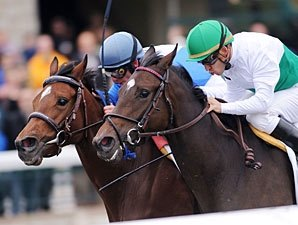 Juvenile Fillies Turf Tough to Decipher