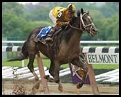 Belmont Park Race Report: One of the Boys