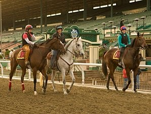 Santa Anita 'Feeling Way' With New Surface