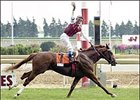 Willing Wando Claims Canadian Triple Crown