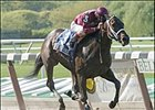 Grade II-Winning Mare Bending Strings Retired