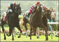 San Francisco BC Mile Attracts Sweet Return