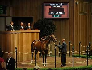 A.P. Indy Filly Brings $3.1 Million