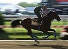 Preakness News Update for May 14, 2015