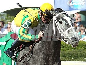 Promise Me Silver wins the Instant Racing Stakes.