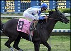 Field of Nine Expected for La. Derby; Proud Accolade Out with Fever