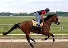 Preakness Notes: Sunday, May 14