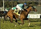 One Off Part of Drysdale Duo in San Luis Rey