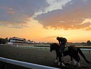 Increased Starters Boost Saratoga Purses