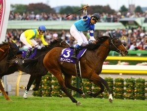 Company Shocks Vodka in Tenno Sho (Autumn)