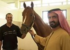 Golfing Phenom Meets Sheikh, Tours Stables