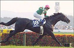 Symboli Kris S Repeats as Japanese Horse of the Year