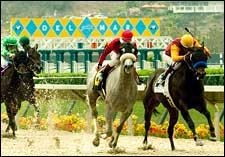 Del Mar's Figures Up; No Deaths So Far on Slower Polytrack