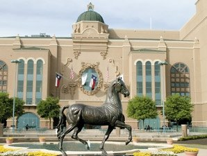 Attendance, Wagering Down at Lone Star Park
