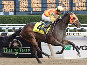 Springside Injured in Demoiselle Romp