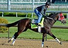 Kentucky Derby News Update: April 28, 2015