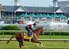 Kentucky Derby Horses & Their Auction Prices