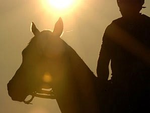 Lawsuit on 'Ruffian' Movie Dismissed