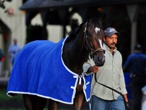 Rachel Alexandra in Final Woodward Tuneup