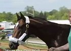 Preakness News Minute 5/17/2012