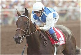 Champion Halfbridled Retired
